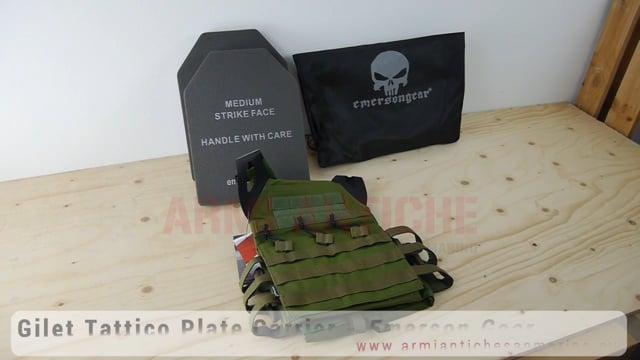 Tactical Vest Gilet Tattico Plate Carrier - Ranger Green